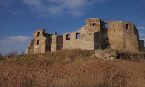 Zdjecie POLSKA / Śląsk / Siewierz / Ruiny zamku  w Siewierzu