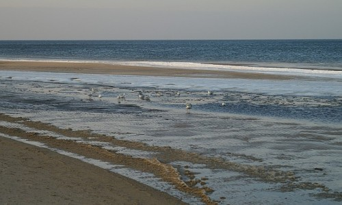 Zdjęcie POLSKA / Zachodniopomorskie / Świnoujście / Bałtyk w zimie