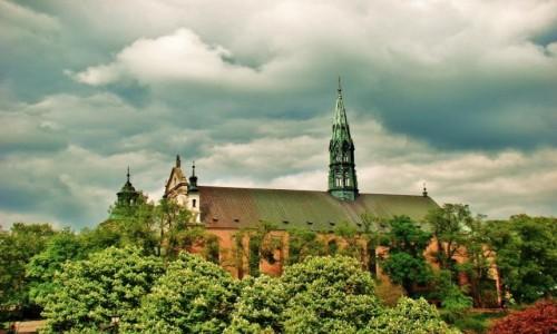 Zdjecie POLSKA / województwo świętokrzyskie / Sandomierz / Bazylika katedralna Narodzenia NMP z XIV wieku