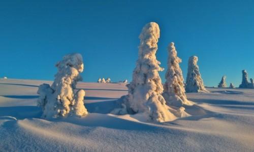 Zdjęcie POLSKA / beskidy / pilsko / niebiesko białe