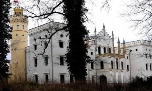Zdjecie POLSKA / opolskie / Dobra / Zamek w Dobrej
