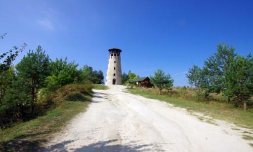 Zdjecie POLSKA / Roztocze / Józefów / Wieża widokowa