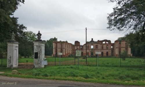 Zdjecie POLSKA / pow. iławski. / gmina Susz. / Kamieniec - Ruiny Pałacu z XVIII w.