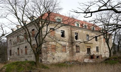 Zdjecie POLSKA / opolskie / Osiek Grodkowski / Pałac w odbudowie