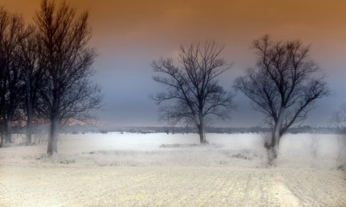 Zdjecie POLSKA / mazowsze / . / zima