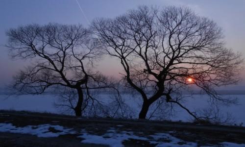 Zdjęcie POLSKA / małopolska / dolina karpia / mroźny wschód w dorzeczu Wisły