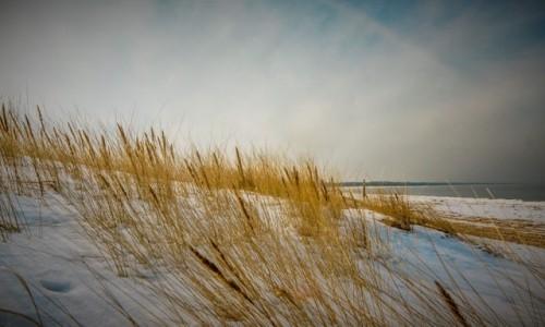 Zdjecie POLSKA / Pomorze / Świbno / plaża zimą