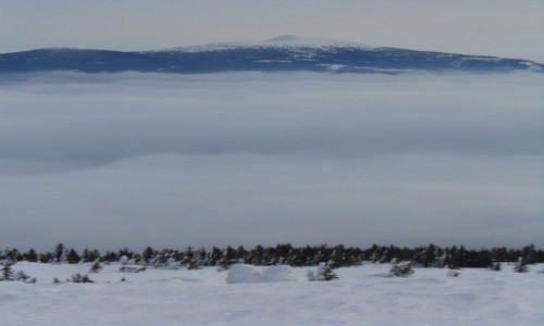 Zdjecie POLSKA / beskid żywiecki / pilsko / morze chmur i Babia Góra