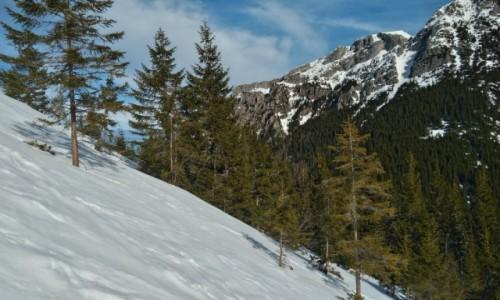 Zdjecie POLSKA / tatry zachodnie / pod Ornakiem / zima i budząca się wiosna
