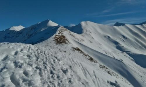 Zdjecie POLSKA / tatry zachodnie / na szlaku... / w drodze na Starorobociański szczyt