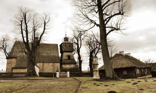 Zdjecie POLSKA / Podkarpacie / Blizne / Na szlaku architektury drewnianej