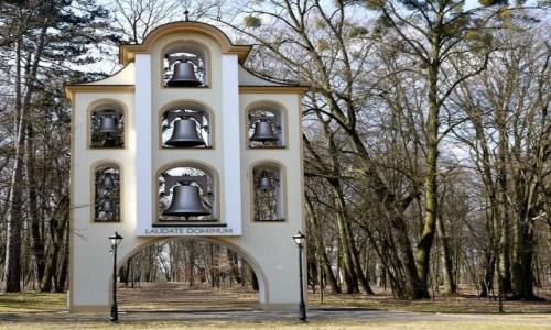 Zdjęcie POLSKA / opolskie / Kamień Śląski / Ciekawa dzwonnica w parku.