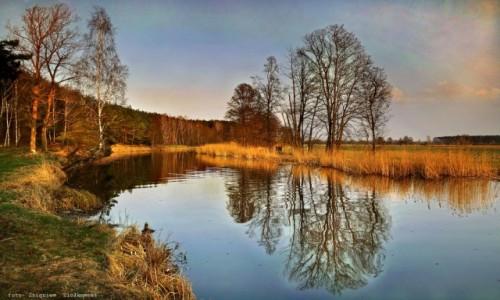 Zdjecie POLSKA / pow-żniński / Dolina Noteci / Gdy dzień się kończy i mrok zapada