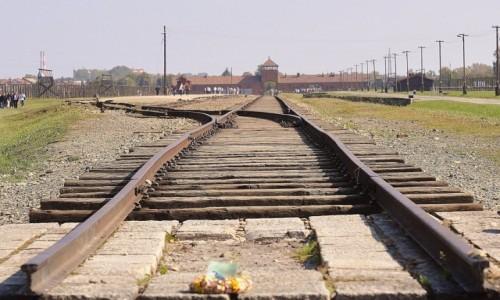 Zdjecie POLSKA / Małopolska / Oświęcim / KZ Auschwitz-Birkenau