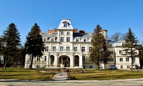 Zdjęcie POLSKA / województwo łódzkie / Malina / Pałac z XIX wieku