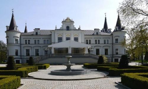 Zdjecie POLSKA / jarociński / Tarce / Pałac od strony parku