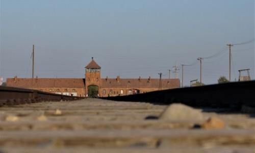 Zdjecie POLSKA / Małopolska / Oświęcim / KL Auschwitz-Birkenau