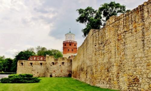 Zdjecie POLSKA / województwo łódzkie / Wieluń / Ruiny Baszty Prochownia z widokiem na Bramę Krakowską