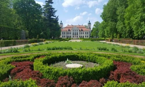 Zdjecie POLSKA / Lubelskie / Kozłówka / W ogrodach Zamoyskich