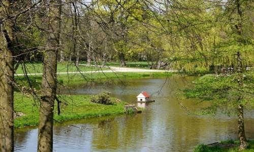Zdjęcie POLSKA / wielkopolska / Tarce / Staw parkowy