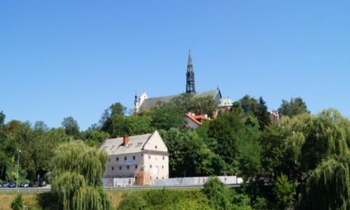 Zdjecie POLSKA / Sandomierz / Sandomierz / widok na miasto