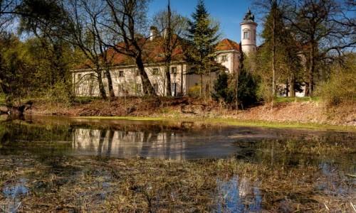 Zdjęcie POLSKA / mazowsze / Otwock Wielki / .