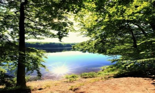 Zdjęcie POLSKA /  Kolbudy / Otomiński Obszar Chronionego Krajobrazu / Słońce w kąpieli