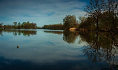 Zdjecie POLSKA / mazowsze / Otwock Wielki / Jezioro Rokola