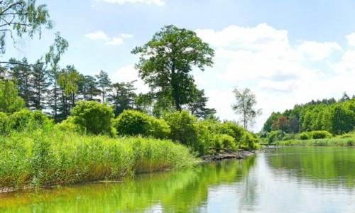 Zdjecie POLSKA / Mazury / Kanał Jegliński / Mazurskie klimaty - jeszcze naturalny