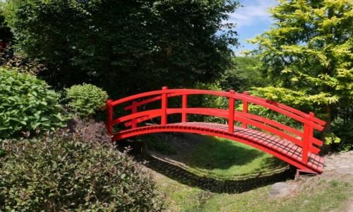 Zdjęcie POLSKA / Zachodniopomorskie / Dobrzyca / ogród japoński w Dobrzycy