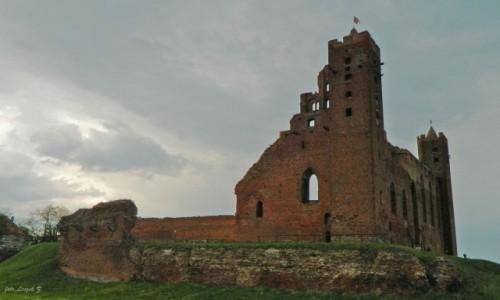 Zdjecie POLSKA / Kujawsko-Pomorskie. / Radzyń Chełmiński. / Ruiny zamku Krzyżackiego w Radzyniu Chełmińskim.