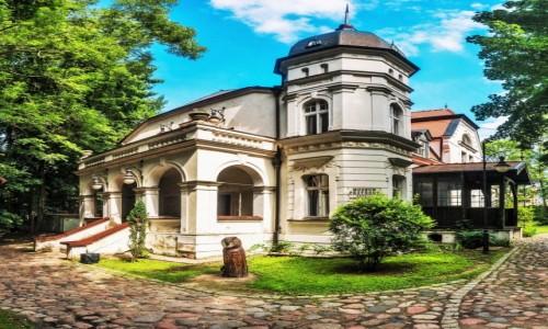 Zdjecie POLSKA / Warmia / Olsztyn / Muzeum Przyrody