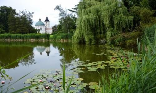 Zdjecie POLSKA / Podkarpacie / Krasiczyn / Krasiczyński Park