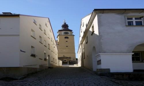 Zdjęcie POLSKA / dolnośląskie / Chełmsko Śląskie / Na skróty do......