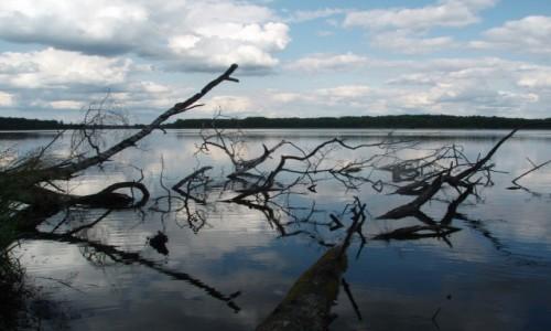 POLSKA / Kaszuby - Bory Tucholskie  / Małe Swornegacie / Jezioro Długie