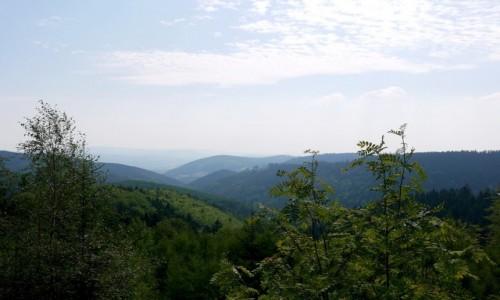 Zdjecie POLSKA / dolnosląskie / Rybnica Leśna / Widok na Góry Suche
