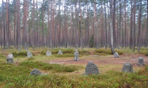 Zdjęcie POLSKA / zachodniopomorskie / Grzybniczka / Krąg nr III w rezerwacie Kamienne Kręgi w Grzybnicy