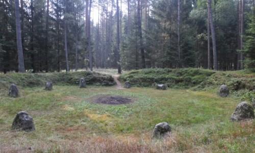 Zdjęcie POLSKA / zachodniopomorskie / Grzybniczka / Krąg nr V w Rezerwacie Kamienne Kręgi w Grzybnicy