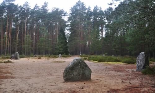Zdjęcie POLSKA / zachodniopomorskie / Grzybniczka / Krąg nr II, jeden z największych w Europie (Grzybnica, okolice Koszalina)