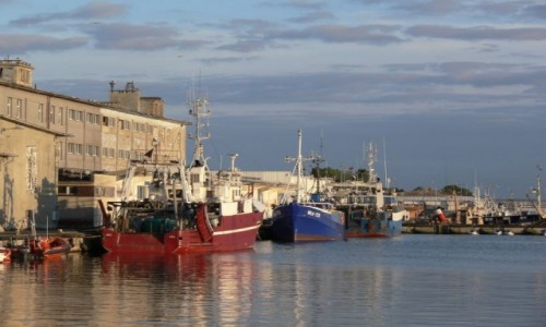 Zdjecie POLSKA / Wybrzeże / Hel / Port