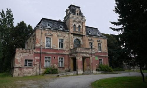 Zdjecie POLSKA / dolnosląskie / Łojowice / Barokowy pałac z XVIII w,