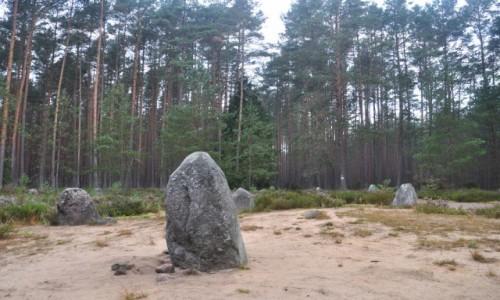 Zdjęcie POLSKA / zachodniopomorskie / Grzybnica / Kamienne Kręgi w Grzybnicy