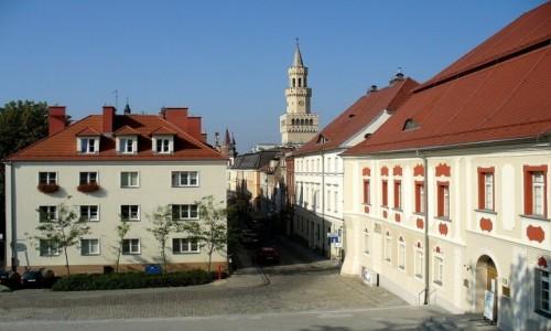 Zdjęcie POLSKA / opolskie / Rynek opolski / Widok ze wzgórza uniwersytetu