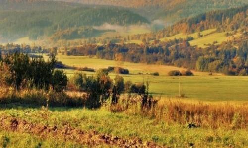Zdjecie POLSKA / Beskid Niski / - / Jesień w Beskidzie