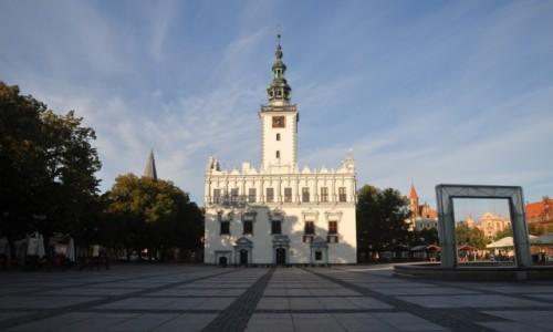 Zdjęcie POLSKA / kujawsko-pomorskie / Chełmno / Ratusz w Chełmnie o poranku