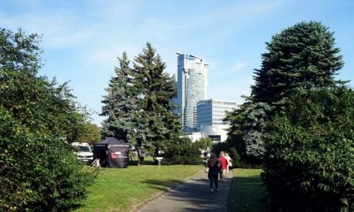 Zdjecie POLSKA / Pomorskie / Gdynia / Park Europy