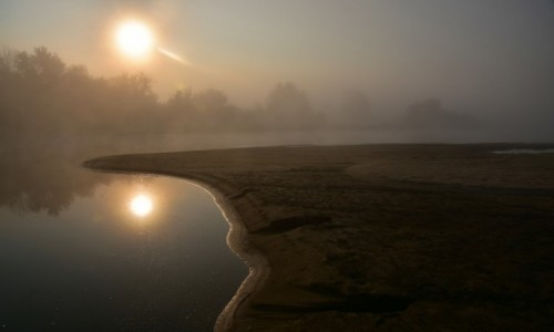 Zdjęcie POLSKA / woj. mazowieckie / gdzieś na jakiejś wyspie za Wyszogrodem / Mglisty poranek