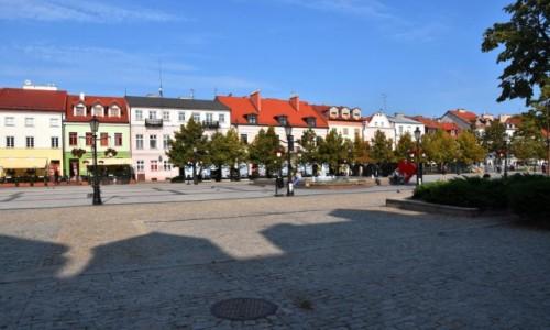 Zdjecie POLSKA / woj. mazowieckie / Płock / Stare miasto w Płocku