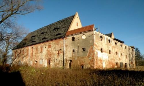 Zdjęcie POLSKA / opolskie / Siestrzechowice / Tyły pałacu