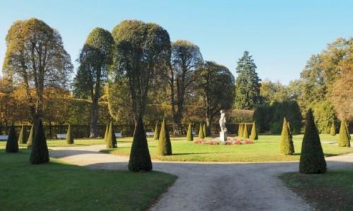 POLSKA / Wielkopolska / Rogalin / w pałacowym parku...
